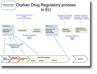 Orphan drug regulatory process